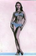 PIN UPS GIRL IN Slovenia Bathing Suit - Pin-Ups