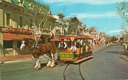 DISNEYLAND-HORSE-DRAWN STREET CAR-NON VIAGGIATA - Disneyland