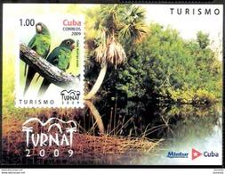 2864  Parrots - Perroquets - 2009 - MNH - 2,25 - Parrots