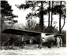 AUSTER AOP9    ++  25 * 20 CM AUSTER AIRCRAFT ARMY - Aviación