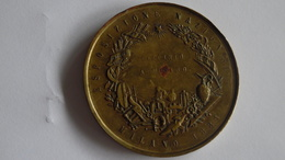 Médaille MILANO ESPOSIZIONE 1881 MEDAGLIA UNIFACE Exposition - Italie