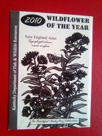 2010 Wildflower Of The Year - 2. Seeds