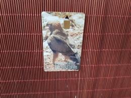 Phonecard Gibraltar Bird  Rare - Gibilterra