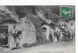 2 Cpa Caves : Château-du-Loir Et Chartre-sur-le-Loir : 1 Dégustation, Animation Avec Ane - France