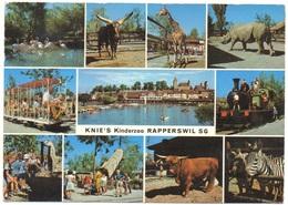 RAPPERSWIL Knie's Kinderzoo Giraffe Nashorn Tram Lokomotive - SG St. Gallen