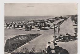 Viale Adriatico, Senigallia - F.G. - Anni '1950 - Senigallia