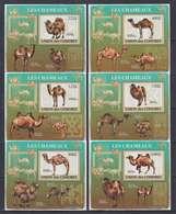 COMORES COMOROS 2009 6 DELUXE PROOFS PROOF EPREUVE EPREUVES DE LUXE - CAMELS CHAMEAUX CAMEL CHAMEAU - RARE MNH - Sellos