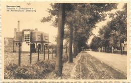 Seveneecken NA1: Fabriek Uyttenhove En Antwerpsche Steenweg - Lochristi