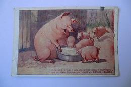 CPA PUBLICITE. POTASSE D ALSACE. Cochon, Truie, Porcelets. - Advertising