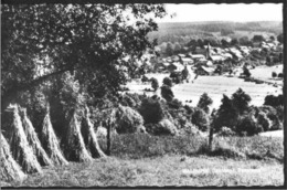 MALEMPRE (Manhay) - Panorama - Oblitération De 1966 - Edition : Piron-Monfort à Malempré (Manhay) - Manhay