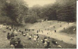 BRUXELLES-BOIS DE LA CAMBRE-LE RAVIN ENDROIT PREFERE DES ENFANTS -Nels - Forests, Parks