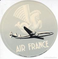 ANTIGUA ETIQUETA DE LA COMPAÑIA AEREA AIR FRANCE (AVION-PLANE) - Baggage Labels & Tags