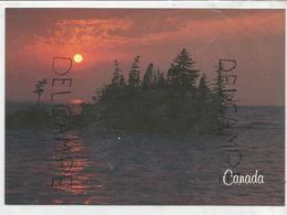 Coucher De Soleil Canadien. Ile Sur Un Lac. - Cartes Modernes