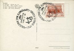 36308 Italia, Special Postmark 1971 Gubbio, Italian Crossbow Champ. Archery - Boogschieten