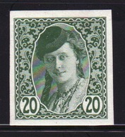 Bosnia 20 Heller Green Newspaper Stamp From 1913 Imperf And Mounted Mint. - Bosnia And Herzegovina
