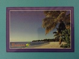 STATI UNITI USA CARTOLINA BARBADOS A WEST COAST BEACH - Barbados