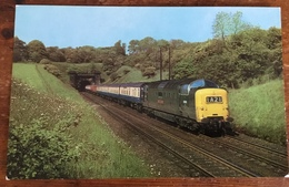 British Railways, Eastern Region, Newcastle To Kings Cross Express, Between The Welwyn Tunnels, Locomotive No. D9006 - Trains