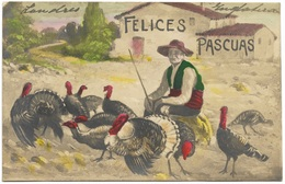 Felices Pascuas - Turkey Famer - Granjero De Pavos - Postmark 1916 - Easter