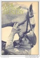 Film Für Sie Progress-Filmprogramm 69/68 - Der Weisse Hengst - Film & TV