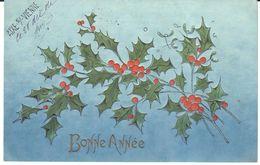 Thèmes - Fêtes - Voeux - Nouvel An - Houx - Relief - Nouvel An