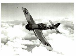 MILES MASTER   21 * 17 CM Aviation, AIRPLAIN, AVION AIRCRAFT ROYAL AIR FORCE - Aviación