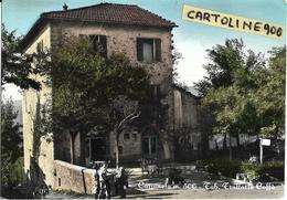 Emilia Romagna-bologna-camugnano Carpineta Veduta Trattoria Bar Caffe'tabacchi Anni 50/60 - Autres Villes
