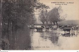 77 . Seine Et Marne .  Combs La Ville . Le  Breuil . Passage Du Gué . - Combs La Ville