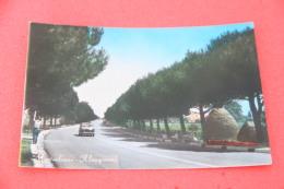 Montesilvano Pescara Il Lungomare 1964 + Auto - Italia