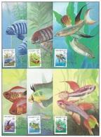UNGHERIA 1987, Tropical Fish   Mi. 3877/82 - Yv. 3087/92 Serie Cpl. 6v. Su 6 Cartoline Maximum - Maximum Cards & Covers