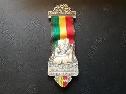 Medaille SUISSE - AUSZEICHNUNG - Kleinkaliberschiessen BREITENBACH 1951 - Professionnels / De Société