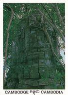 1 AK Kambodscha * Tempel Ta Prohm Erbaut 12. Jh. - Dieser Tempel Wurde In Dem Zustand Belassen, In Dem Er Gefunden Wurde - Kambodscha