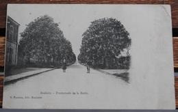 BOULOIRE PROMENADE DE LA BUTTE - Bouloire
