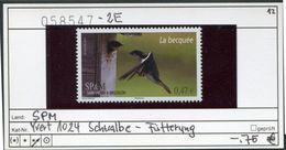 Saint Pierre Et Miquelon - SPM - Michel ? Yvert 1024 ** Mnh Neuf Postfris - Schwalbe - La Becquée - Swallows