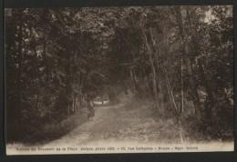 76 LES PETITES DALLES - Sous Bois , Avenue De L'imératrice D'Autriche Conduisant à Sassetot Le Mauconduit - Autres Communes