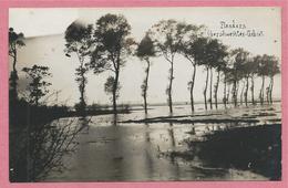 West-Vlaanderen - Flandre Occidentale - Carte Photo - Foto - BIKSCHOTE - Überschwemmtes Gebiet- Guerre 14/18 - Carte C29 - Belgien