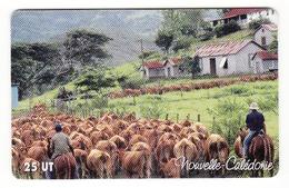 25u Stockmen 2005 - New Caledonia