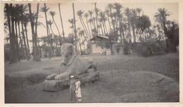 ¤¤  -   EGYPTE   -  MENPHIS   -  Le Sphinx En 1934   -  Voir Description       -  ¤¤ - Sfinge