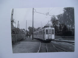 Foto Tram Expo 58 - Dilbeek