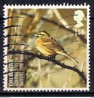 Great Britain 2007 - Birds - UK Species In Recovery - 1952-.... (Elizabeth II)