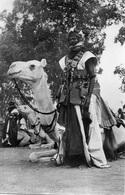NIGER PARTISAN MEHARISTE - Niger