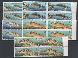 British Antarctic Territory (BAT) 1999 Fishes 5v Bl Of 4 ** Mnh (39815) - Brits Antarctisch Territorium  (BAT)