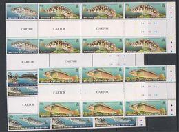 British Antarctic Territory 1999 Fish Of The Southern Ocean 5v 3x Gutter ** Mnh (39815B) - Ongebruikt