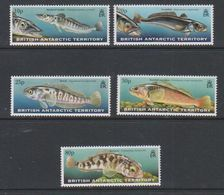 British Antarctic Territory 1999 Fish Of The Southern Ocean 5v  ** Mnh (39815E) - Ongebruikt