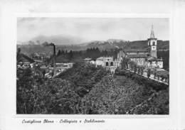 Castiglione Olona - Collegiata E Stabilimento - Non Circulé ( Carte 10 X 15 Cm) - Varese