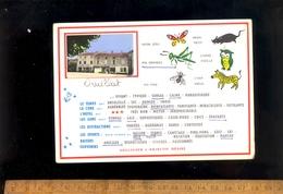 DRUILLAT Ain 01 : Carte à Choix Avec Photo Village Commerces Café épicerie Boulangerie - Other Municipalities
