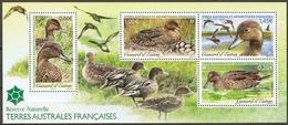TAAF 2013  Mi.No. 793 - 796 (Block 33)  Fr. Antarktis  Birds S/sh MNH** - Altri