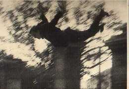 Yves KLEIN Le Peintre De L'espace Se Jetant Dans Le Vide, Photo Harry Shunk - Peintures & Tableaux