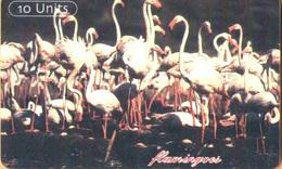 Tanzania - TAN-T-15c, GEM5 (Red), Flamingos, 10 U, 2002, Used - Tanzania