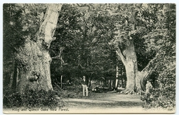 NEW FOREST : KING AND QUEEN OAKS - Autres