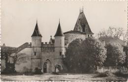 R17-47) LISSE (LOT ET GARONNE)  LE CHATEAU  -  (2 SCANS) - France